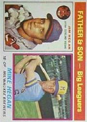 1976 Topps Baseball Cards      069      Jim/Mike Hegan FS