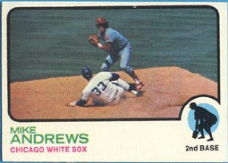 1973 Topps Baseball Cards      042      Mike Andrews