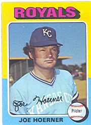 1975 Topps Baseball Cards      629     Joe Hoerner