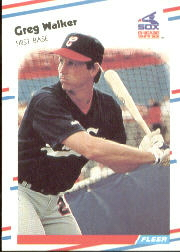 1988 Fleer Baseball Cards      411     Greg Walker