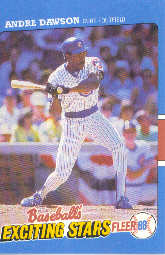 1988 Fleer Exciting Stars Baseball Cards       013      Andre Dawson